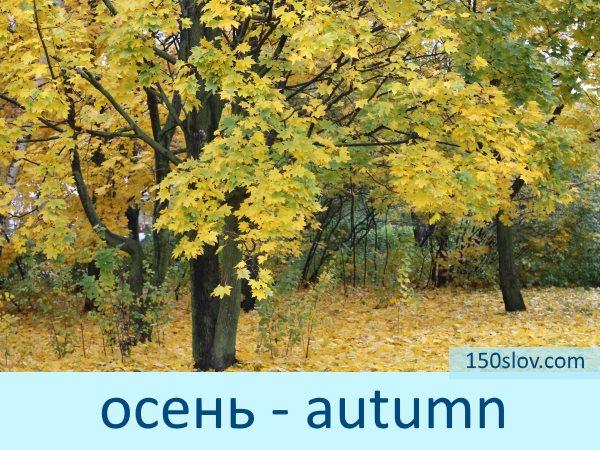 Карточка осень на английском языке
