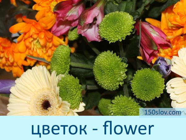 Карточка цветы на английском языке